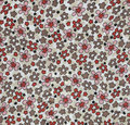 Floral abstract background. Royalty Free Stock Photo