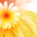 Floral abstract background eps Royalty Free Stock Images