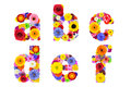 Floral alphabet isolated on white letters a b c d e f six made of many colorful and original flowers Stock Image