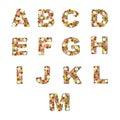 Floral alphabet [A - M] set Royalty Free Stock Photo
