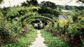 Floral arch at claude monet s gardens giverny france an arched walkway through the middle of in Stock Photos