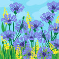 Floral background cornflower yellow flowers Stock Photo