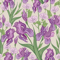 Floral background flower border flourish frame seamless pattern Royalty Free Stock Photography