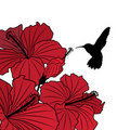 Floral background with hibiscus and hummingbird Royalty Free Stock Images