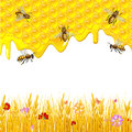 Floral background with honey Royalty Free Stock Photo