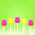 Floral background with pink and yellow tulips paper simple card Royalty Free Stock Photos