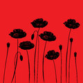 Floral background with poppies poppy a space for your text Stock Photo