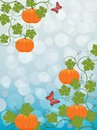 Floral background with a pumpkin Stock Photos