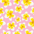 Floral background seamless pattern yellow plumeria Royalty Free Stock Photo