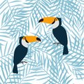 Floral background with tropical leaves and toucans.