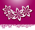Floral background white flowers over pink Royalty Free Stock Photography