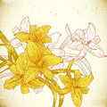 Floral background with yellow lilies in vintage style Royalty Free Stock Photography