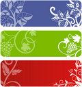 Floral banner set Stock Photos