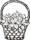 Floral basket Royalty Free Stock Images