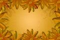 Floral card floral background floral pattern illustrated color of old gold Stock Images