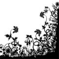 Floral chaos, vector Royalty Free Stock Photo