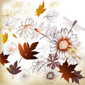 Floral clean background with leafs elegant hand drawn vector flowers and butterflies Stock Images