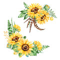 Floral collection with sunflowers,leaves,branches,fern leaves,feathers Royalty Free Stock Photo