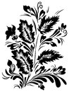 Floral contrast composition decorative bouquet with silhouettes of abstract flowers and leaves black and white design element Royalty Free Stock Photo