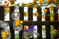 Floral decoration at the garden gate in spring Stock Image