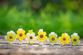 Floral decorations outdoors easter holidays concept Royalty Free Stock Photo