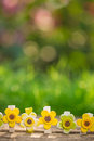 Floral decorations outdoors easter holidays concept Stock Image