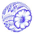 Floral decorative ornament hibiscus Stock Photos