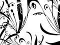 Floral design. Digital artwork. Royalty Free Stock Photo