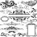Floral design elements Royalty Free Stock Photo