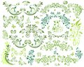 Floral design elements collection of Stock Image