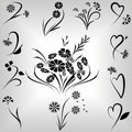Floral design elements set Royalty Free Stock Photo