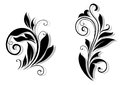 Floral design elements and shapes on white background Royalty Free Stock Photo