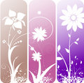 Floral designs Royalty Free Stock Photos