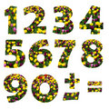 Floral Digits Royalty Free Stock Photo
