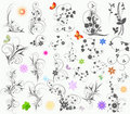 Floral  elements Royalty Free Stock Images