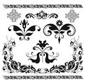Floral elements decorative shape with black Stock Image