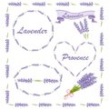 Floral elements for logo or decor. Lavender icons set: flowers, calligraphy, floral elements