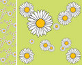Floral endless pattern Stock Images