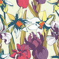 Floral flower narcissus iris seamless hand drawn pattern.Colore