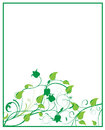 Floral frame design illustration in green colors Royalty Free Stock Photos