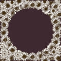 Floral frame of detailed hand drawn daisies flowers. Vector illustration. Royalty Free Stock Photo