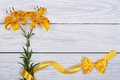 Floral frame from flowers yellow lily and ribbons with bow Royalty Free Stock Photos