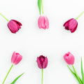 Floral frame with pink tulip flowers on white background. Flat lay. Top view. Valentines Day background.