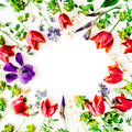 Floral frame with red tulips, yellow flowers, purple iris, branches, leaves and petals isolated on white background