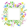 Floral frame of a wild flowers and herbs on a white background. Royalty Free Stock Photo