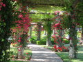 Floral garden Royalty Free Stock Photo