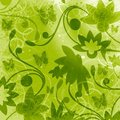 Floral green background Stock Image