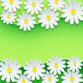 Floral green frame with d chamomile flower stylish background abstract beautiful spring or summer background sheet of paper Royalty Free Stock Image