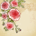 Floral invitation background Royalty Free Stock Image