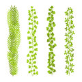 Floral leaf green brushes set vector illustration Royalty Free Stock Photo